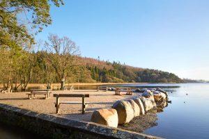 Lough Muckno Leisure Park